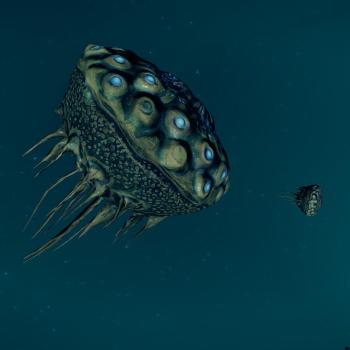 Luteolum Bulb Mollusc